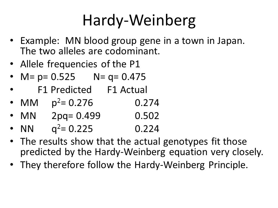 Hardy-Weinberg Example: MN blood group gene in a town in Japan. The two alleles are codominant. Allele frequencies of the P1.