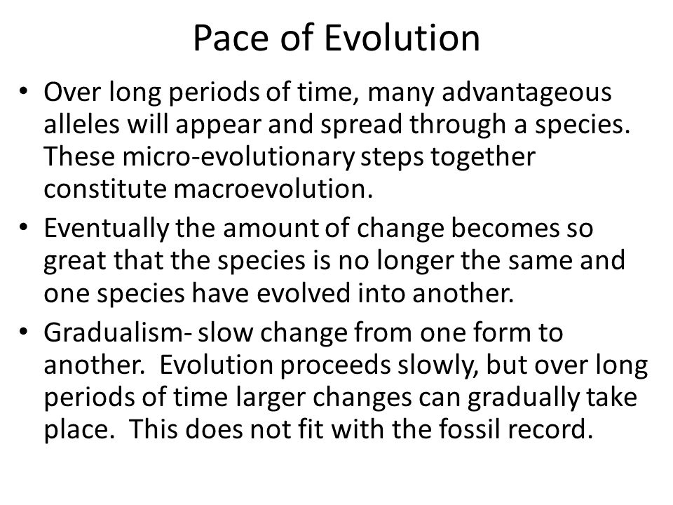 Pace of Evolution