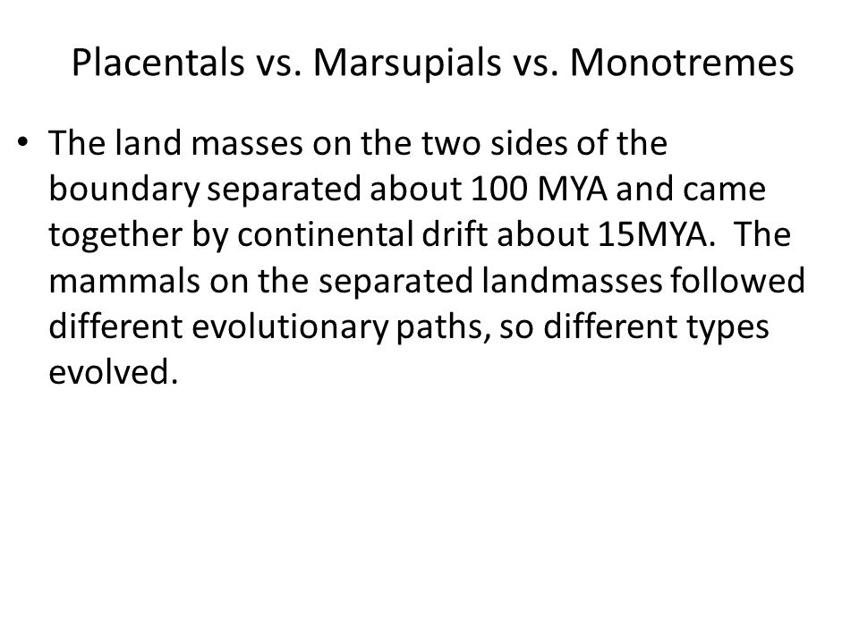 Placentals vs. Marsupials vs. Monotremes