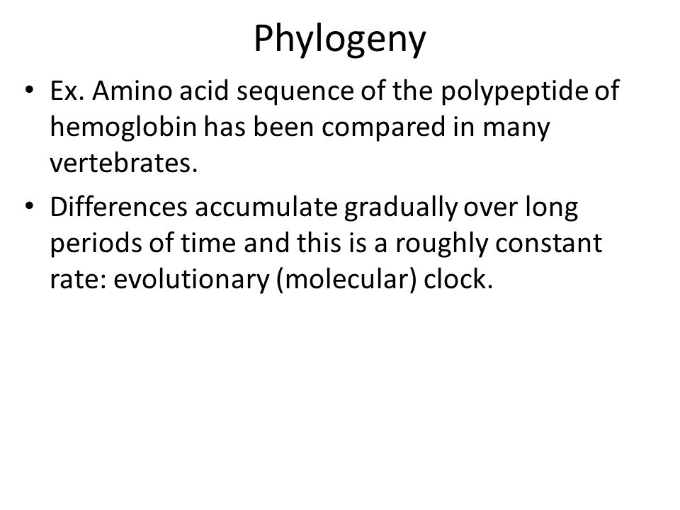 Phylogeny Ex. Amino acid sequence of the polypeptide of hemoglobin has been compared in many vertebrates.