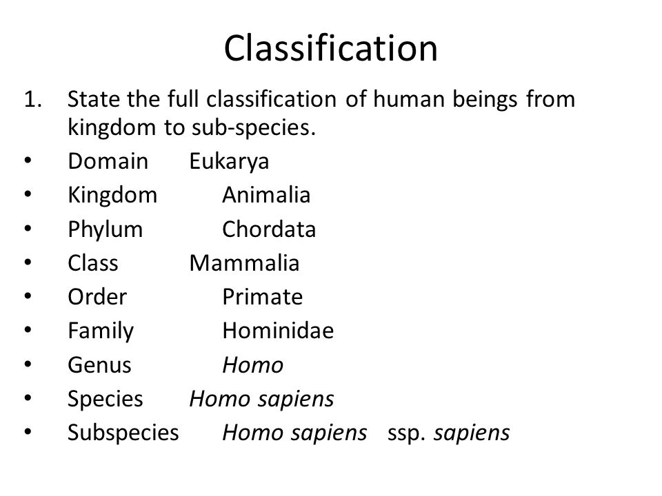 Classification State the full classification of human beings from kingdom to sub-species. Domain Eukarya.