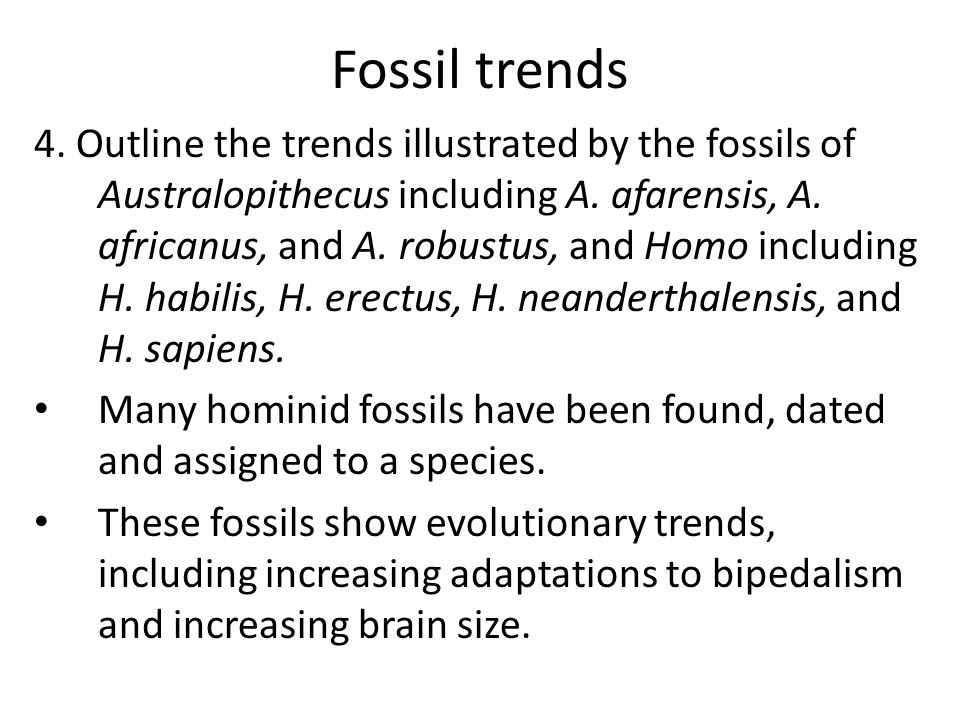 Fossil trends