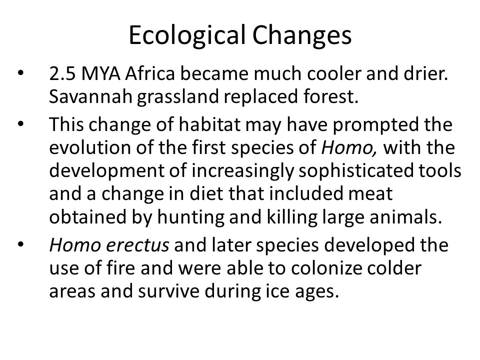 Ecological Changes 2.5 MYA Africa became much cooler and drier. Savannah grassland replaced forest.