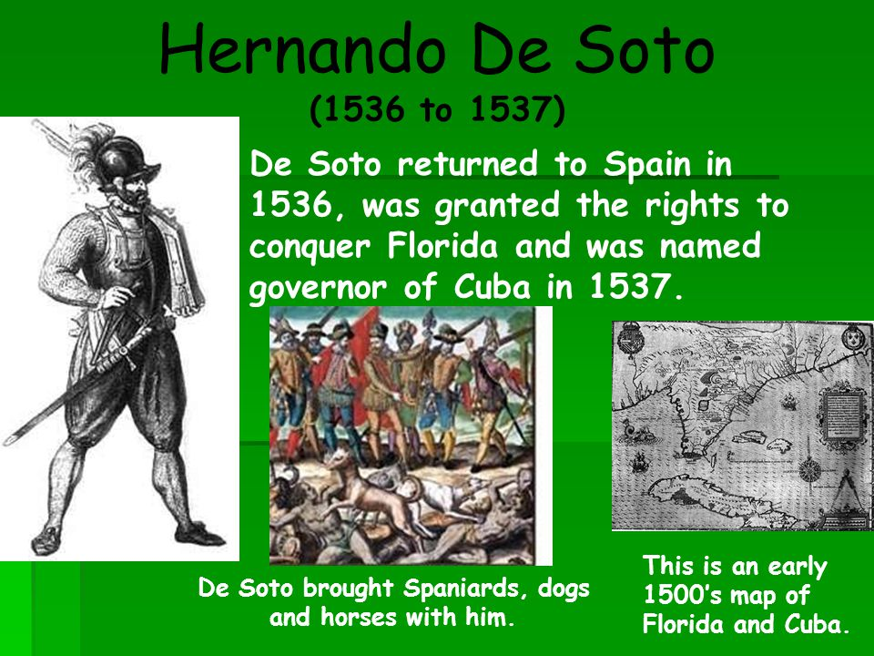 De Soto brought Spaniards, dogs and horses with him.