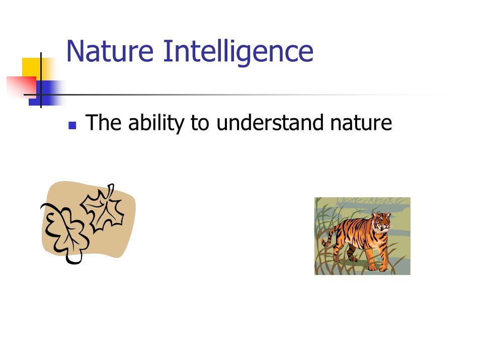 Nature Intelligence The ability to understand nature