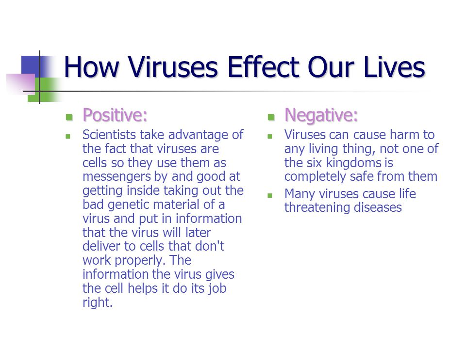 How Viruses Effect Our Lives