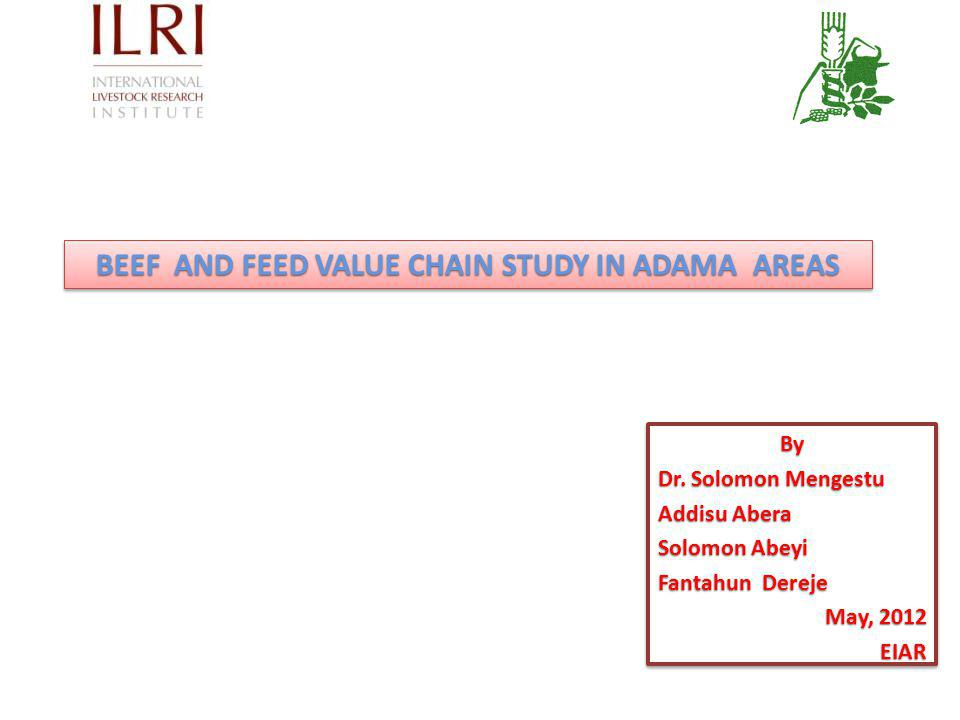 BEEF AND FEED VALUE CHAIN STUDY IN ADAMA AREAS