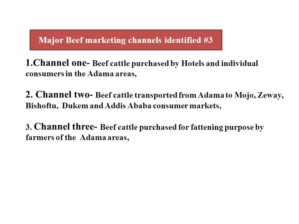 Major Beef marketing channels identified #3