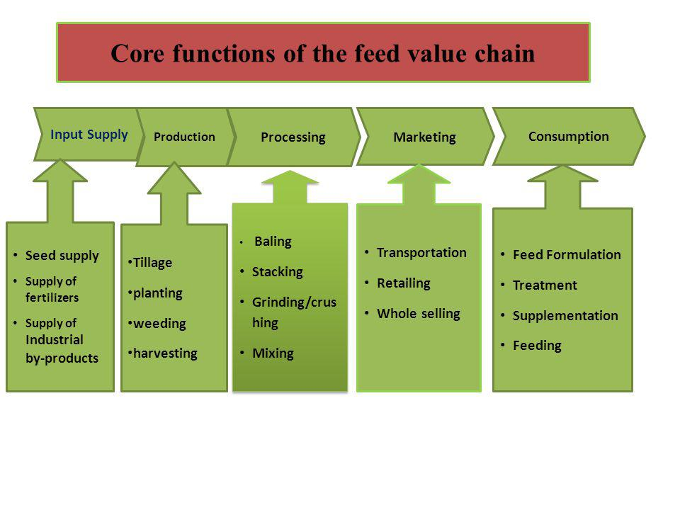 Core functions of the feed value chain