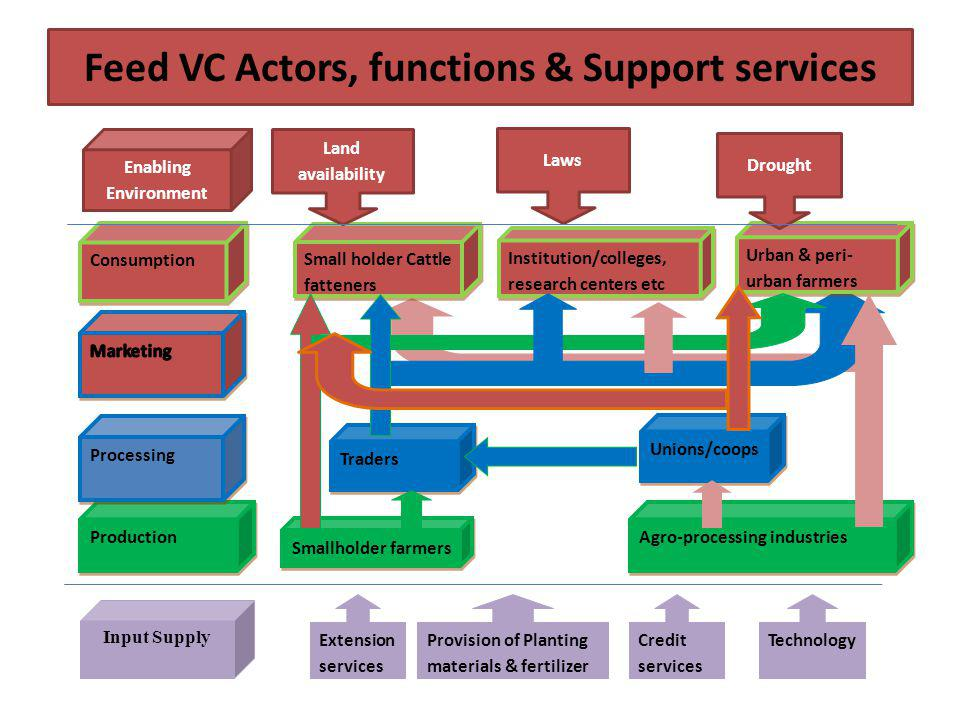 Feed VC Actors, functions & Support services