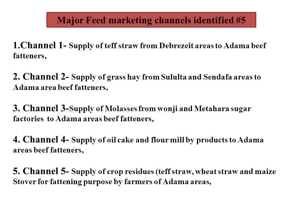 Major Feed marketing channels identified #5