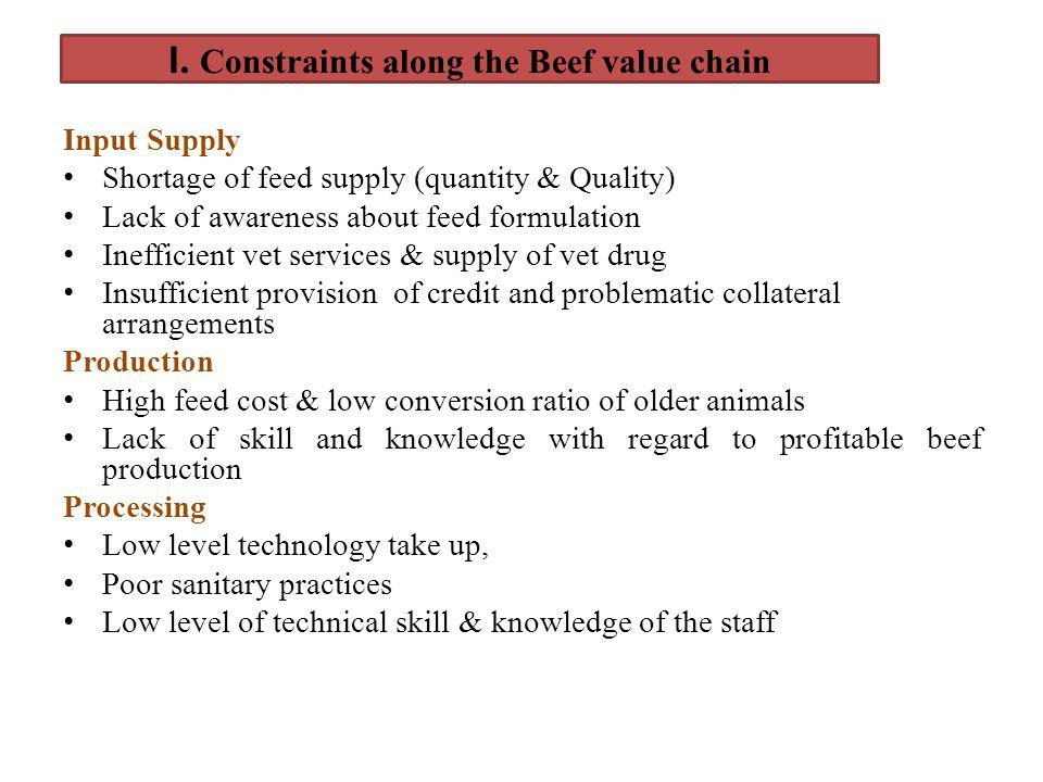 I. Constraints along the Beef value chain