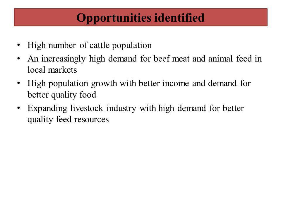 Opportunities identified