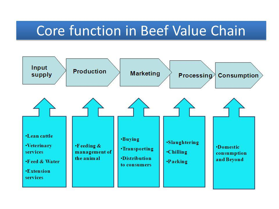 Core function in Beef Value Chain