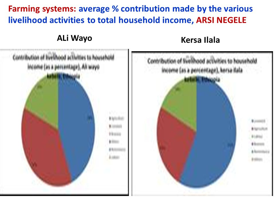 Farming systems: average % contribution made by the various livelihood activities to total household income, ARSI NEGELE