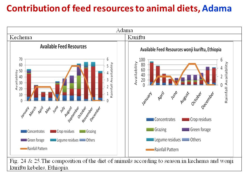Contribution of feed resources to animal diets, Adama