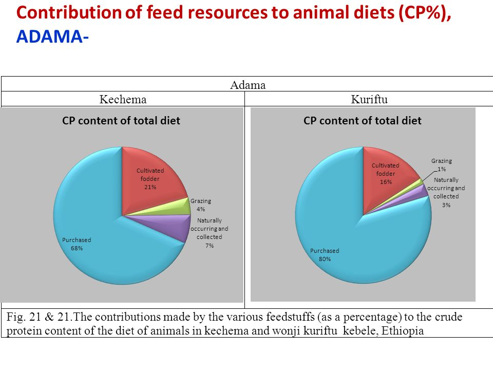 Contribution of feed resources to animal diets (CP%), ADAMA-