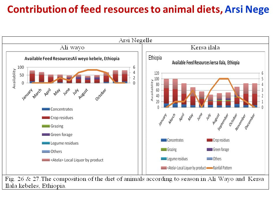 Contribution of feed resources to animal diets, Arsi Nege