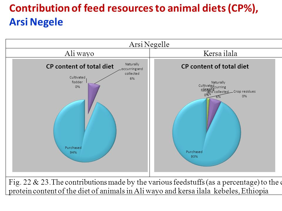 Contribution of feed resources to animal diets (CP%), Arsi Negele