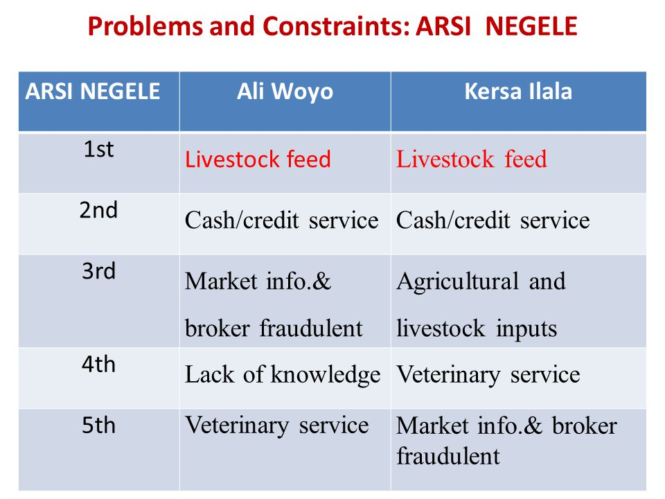 Problems and Constraints: ARSI NEGELE