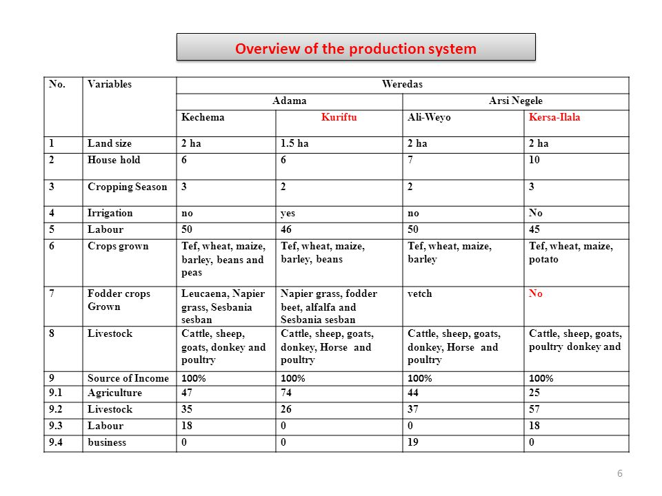 Overview of the production system