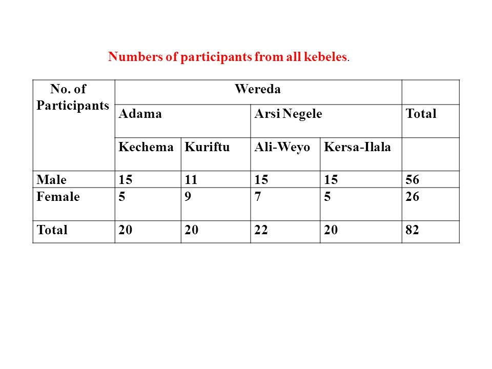 Numbers of participants from all kebeles.