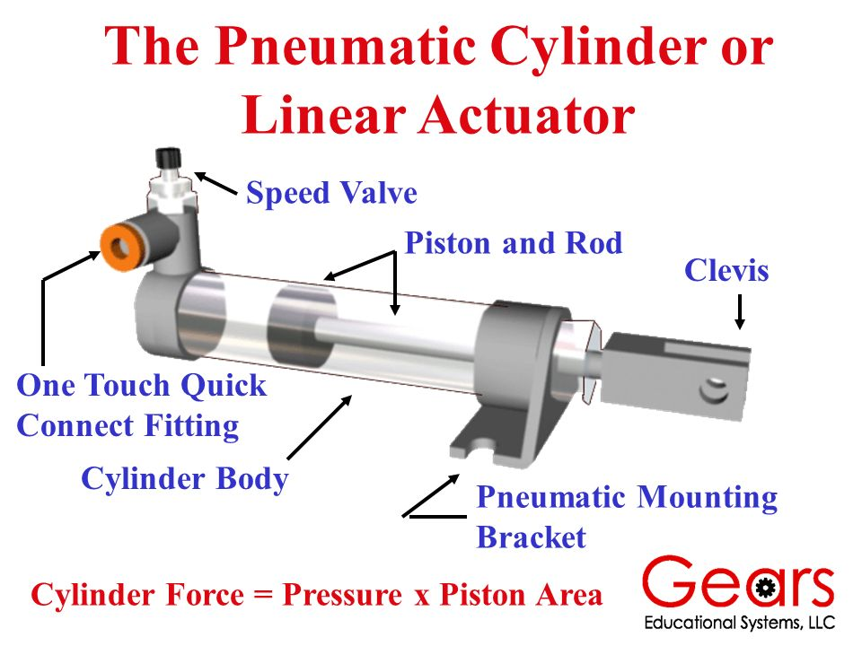 The Pneumatic Cylinder or Linear Actuator