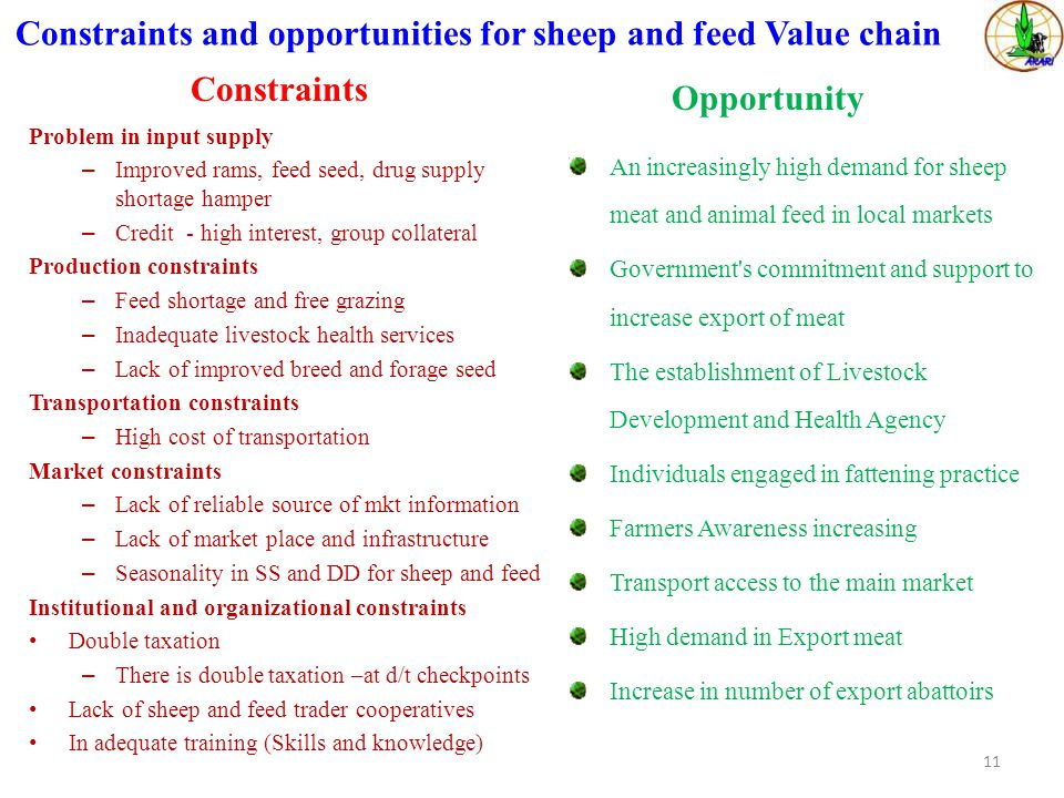 Constraints and opportunities for sheep and feed Value chain