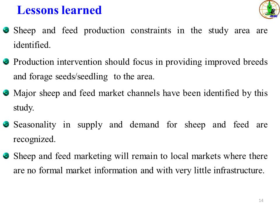 Lessons learned Sheep and feed production constraints in the study area are identified.