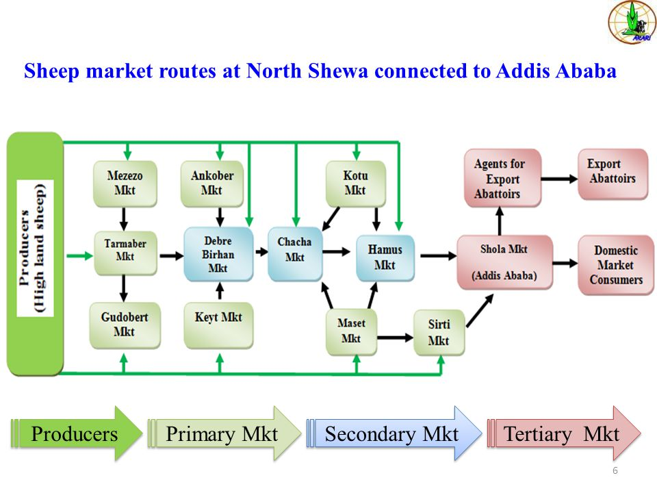 Sheep market routes at North Shewa connected to Addis Ababa