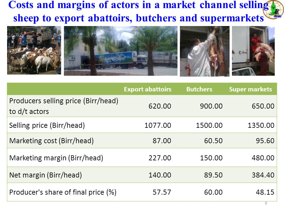 Costs and margins of actors in a market channel selling sheep to export abattoirs, butchers and supermarkets