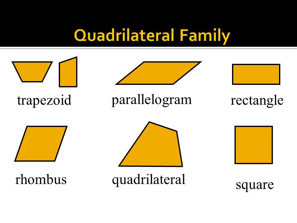 Quadrilateral Family trapezoid parallelogram rectangle rhombus