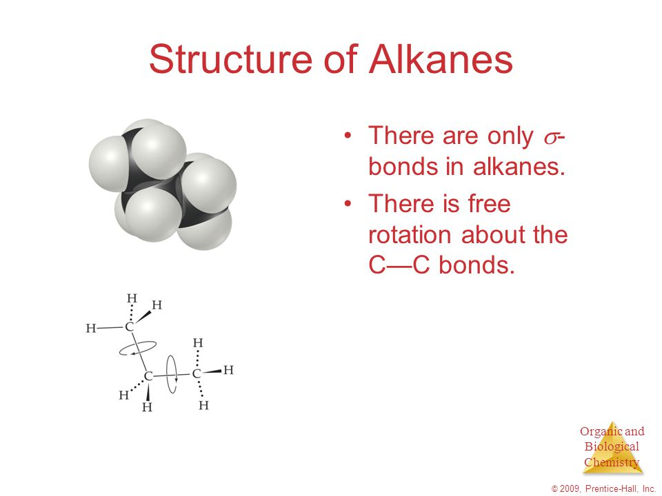 Structure of Alkanes There are only -bonds in alkanes.