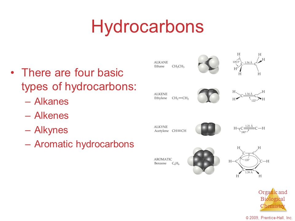 Hydrocarbons There are four basic types of hydrocarbons: Alkanes
