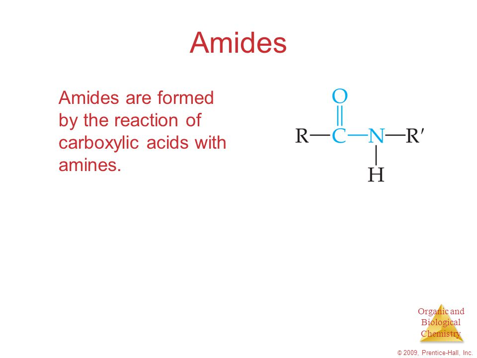 Amides Amides are formed by the reaction of carboxylic acids with amines.