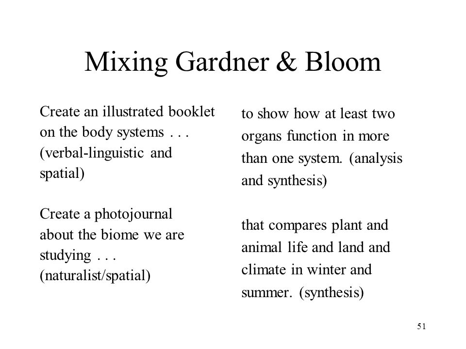Mixing Gardner & Bloom Create an illustrated booklet