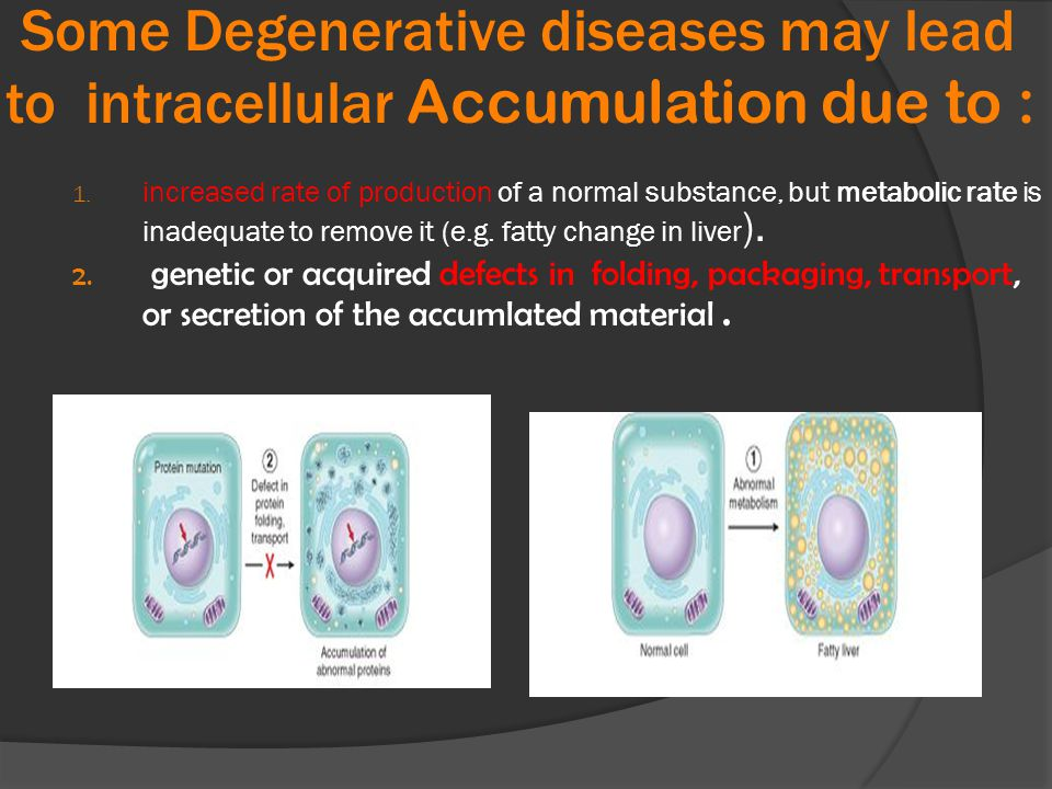 Some Degenerative diseases may lead to intracellular Accumulation due to :