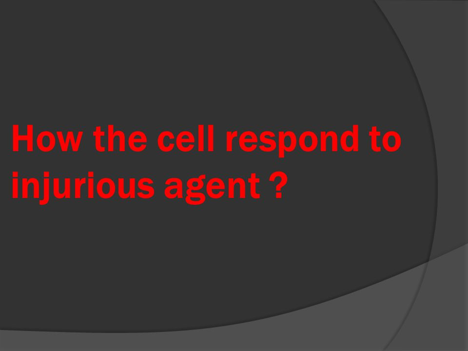 How the cell respond to injurious agent