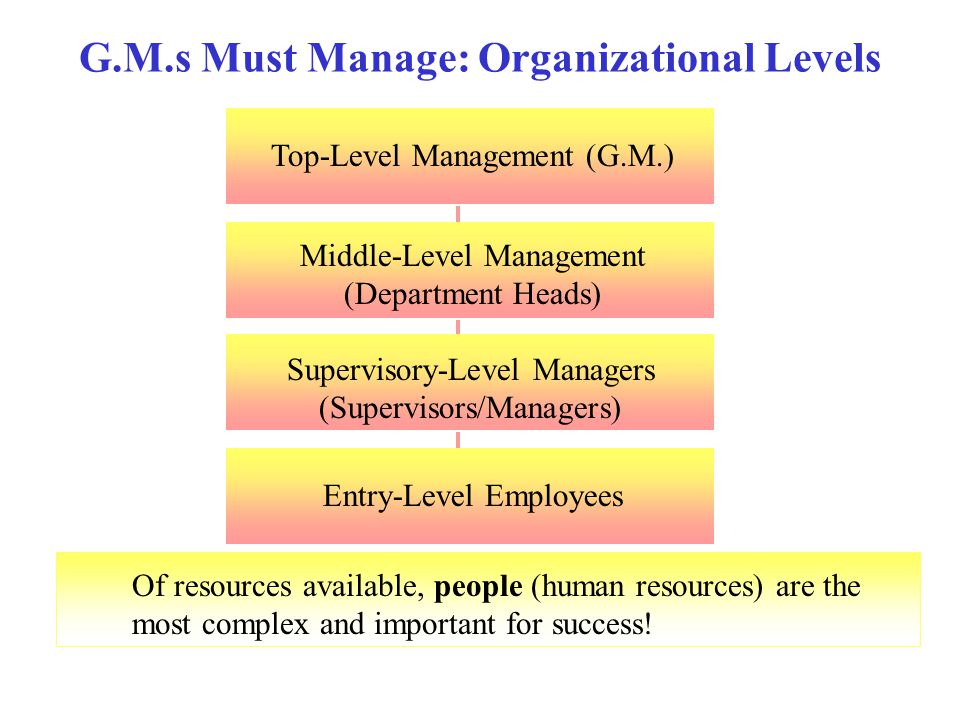 G.M.s Must Manage: Organizational Levels