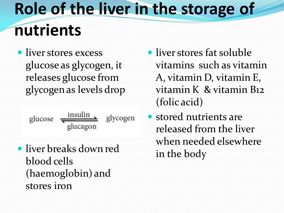 Role of the liver in the storage of nutrients