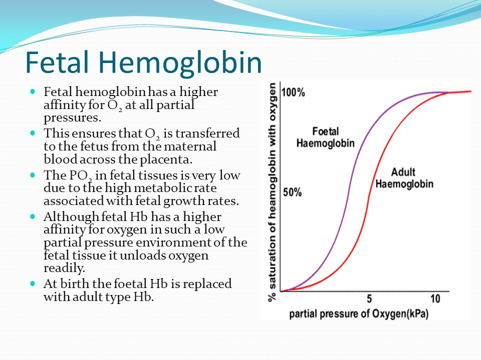 Fetal Hemoglobin Fetal hemoglobin has a higher affinity for O2 at all partial pressures.