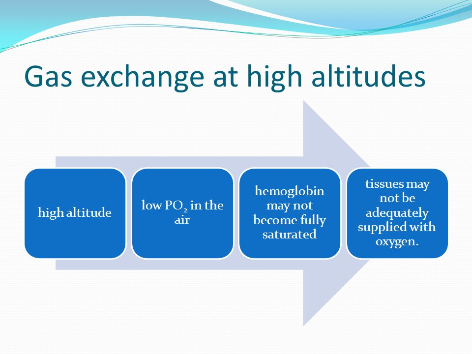 Gas exchange at high altitudes
