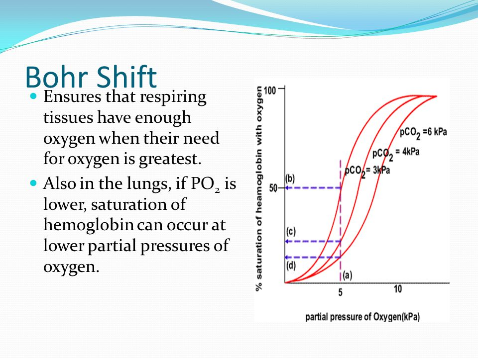 Bohr Shift Ensures that respiring tissues have enough oxygen when their need for oxygen is greatest.