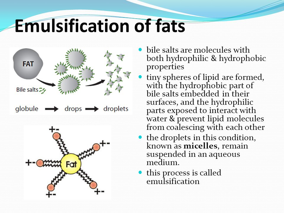 Emulsification of fats