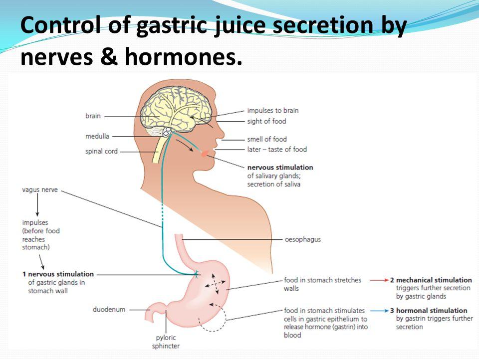 Control of gastric juice secretion by nerves & hormones.