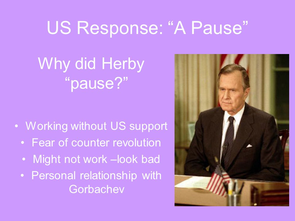 US Response: A Pause Why did Herby pause