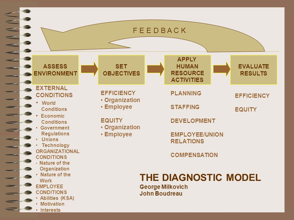 THE DIAGNOSTIC MODEL F E E D B A C K World ASSESS ENVIRONMENT SET