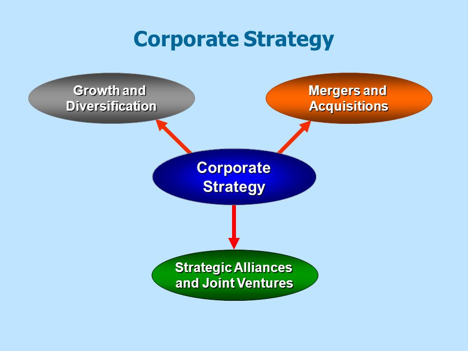 Corporate Strategy Corporate Strategy Growth and Diversification