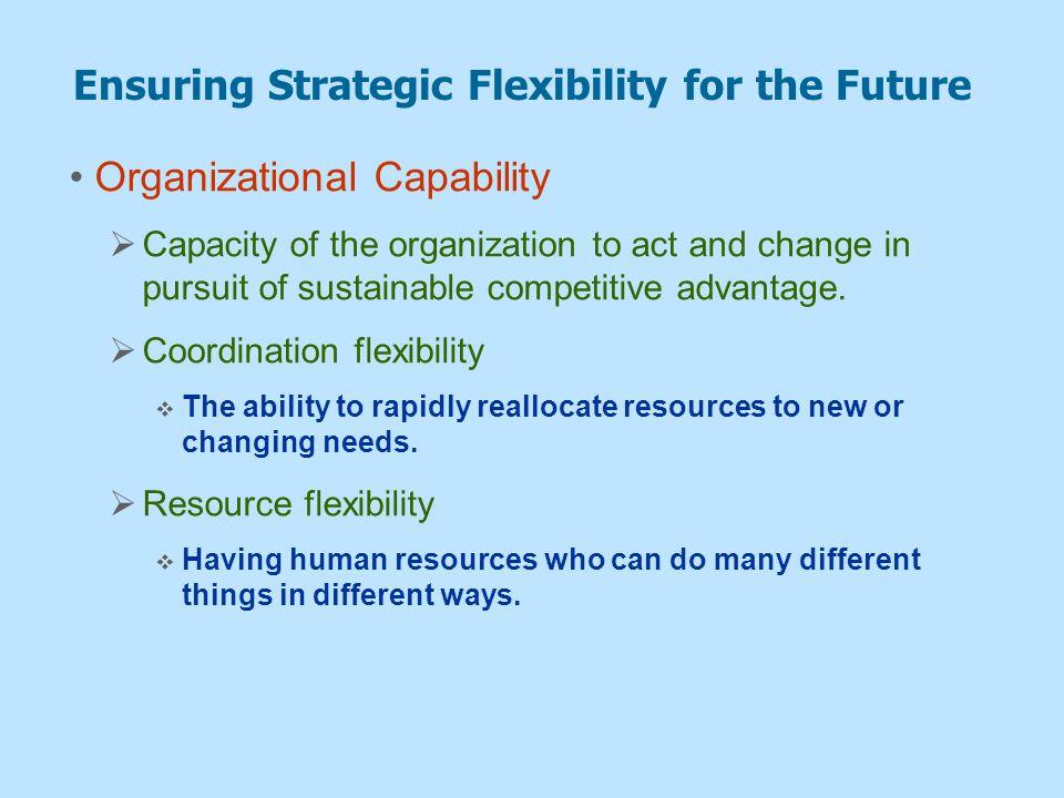 Ensuring Strategic Flexibility for the Future
