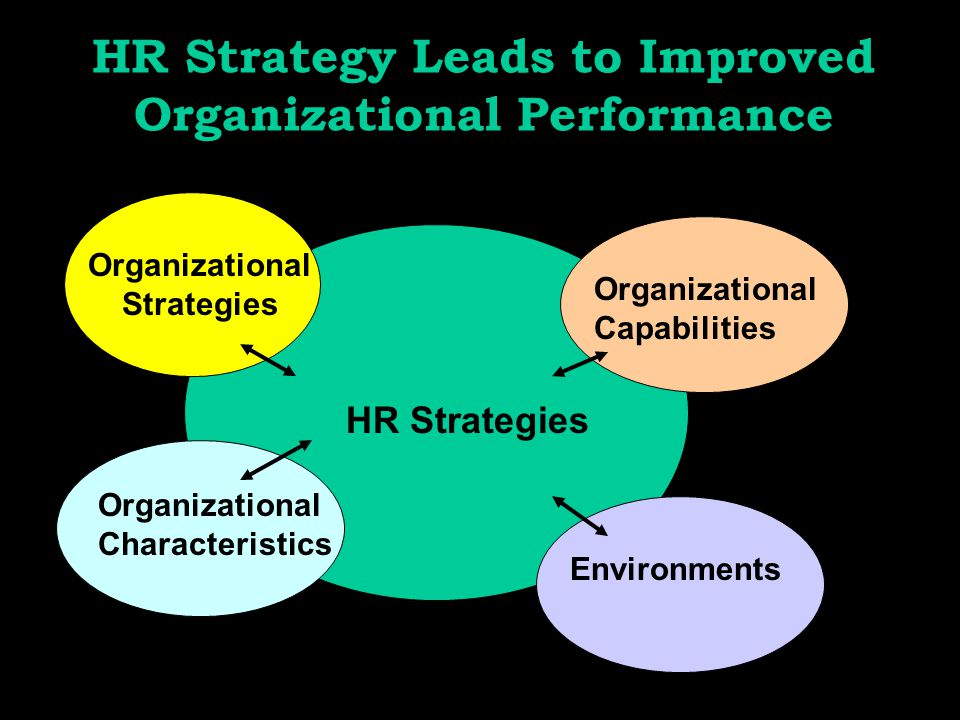 HR Strategy Leads to Improved Organizational Performance